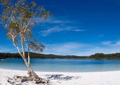 Beautiful seashore in Fraser Island