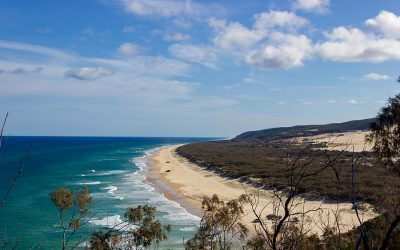 Fraser Island (K'gari) In a Snapshot