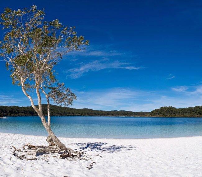 Beautiful beach in Fraser Island
